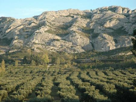 In The Alpilles