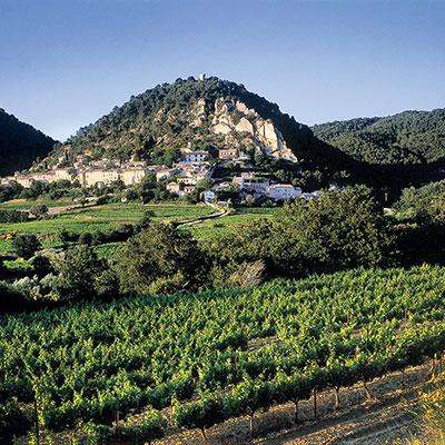 Les Vins de Provence.... un must à découvrir!